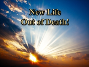 New Life Out of Death